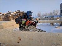Working platform Bear log in Siberia