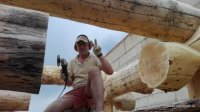 Work platform Bear log - logging of cedar logs