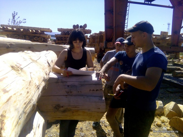 The team of the company Medvepie log on the construction of log houses from cedar