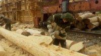Work platform Bear log